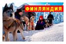 новогодний тур в Финляндию: Новый год в Лапландии